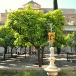 Pomarančové nádvorie Córdoba