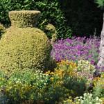 džbán v záhrade