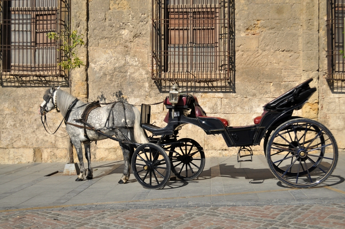 Nádvorie Córdoba