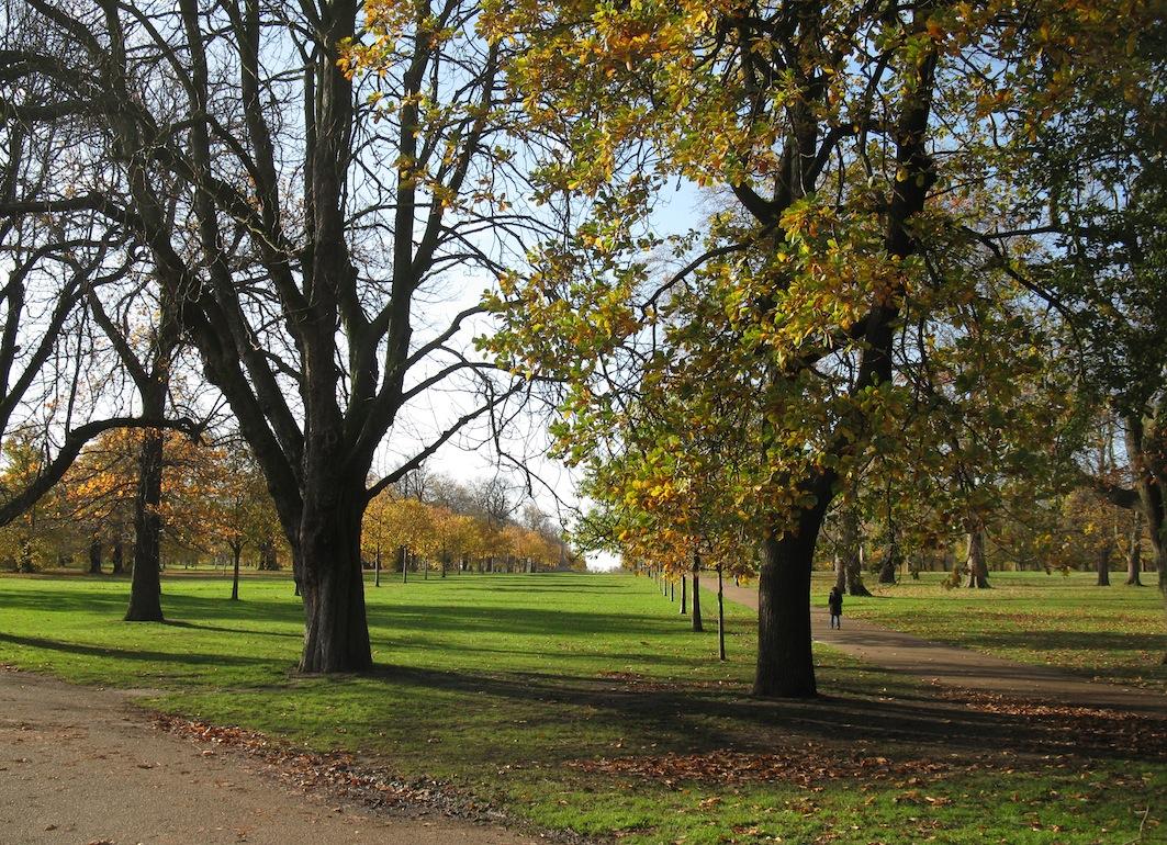 Kensingtonské záhrady - Londýn