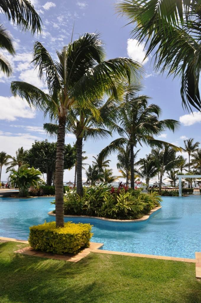 palmy pri bazéne v hoteli
