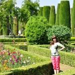 V záhrade - Alcázar de los reyes Cristianos