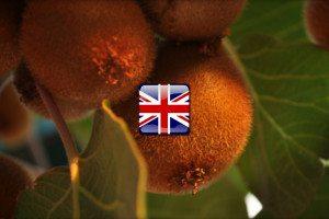 Ovocie po anglicky