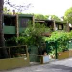 domčeky, Pinus Village
