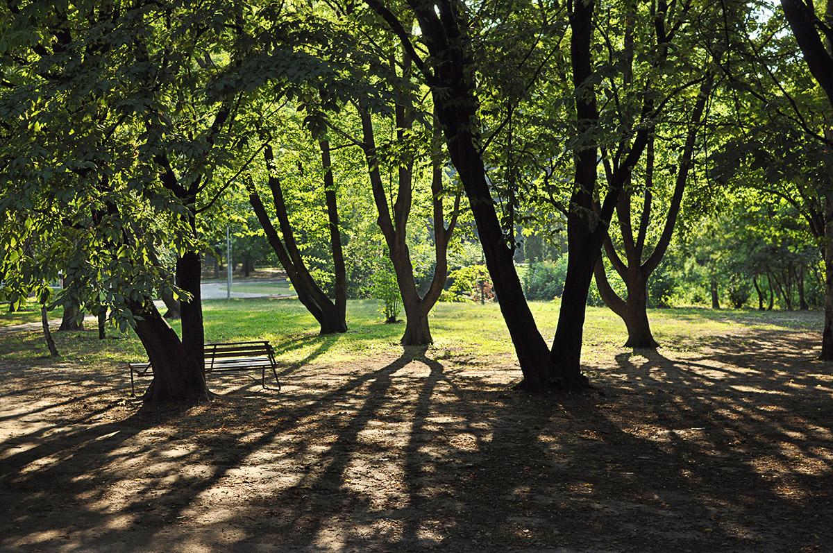 Park, les na Margit Sziget