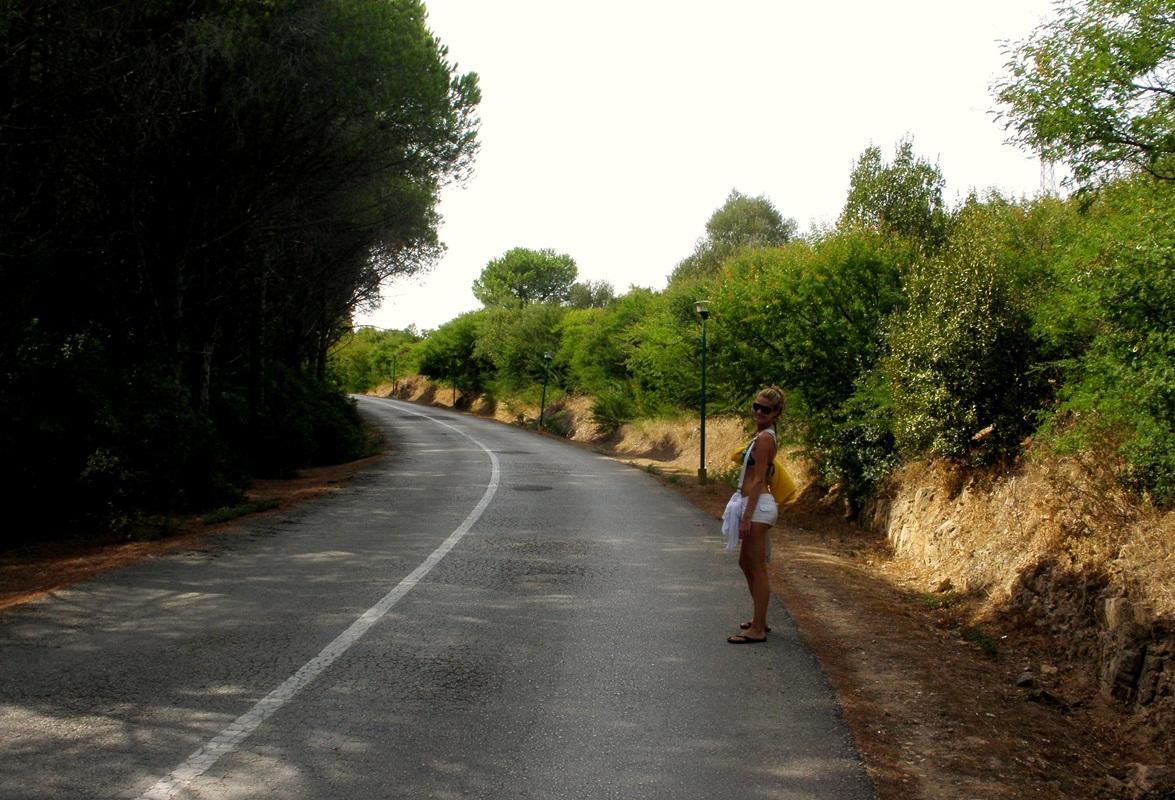na ceste z Pinus Village
