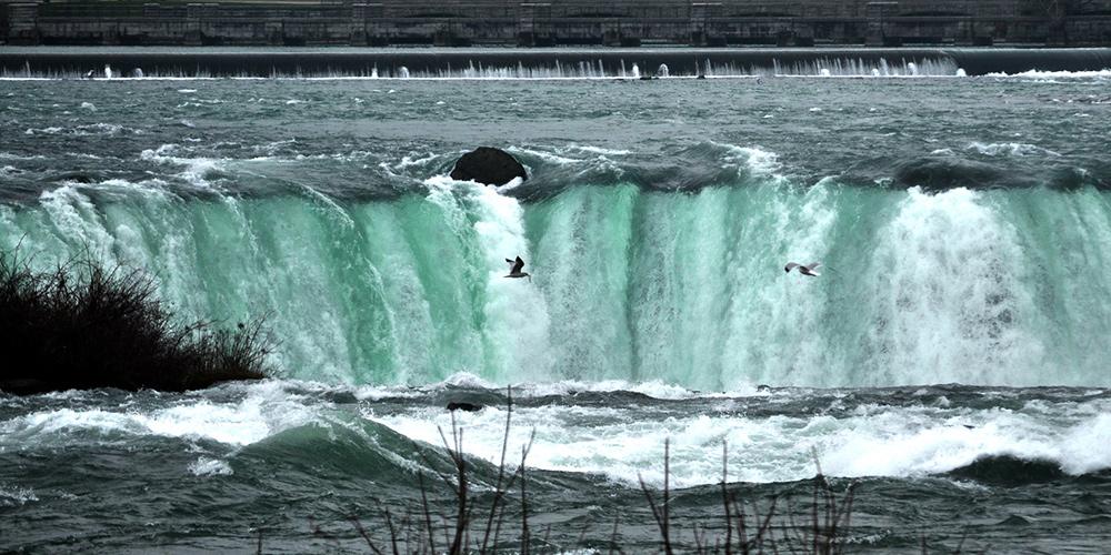 Niagarské vodopády a čajky