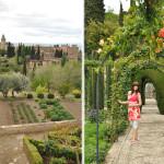 Zelená Alhambra