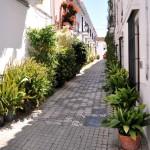 ulička v meste Marbella