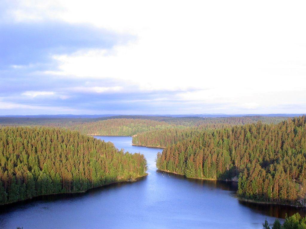 Fínsko jazerá a lesy