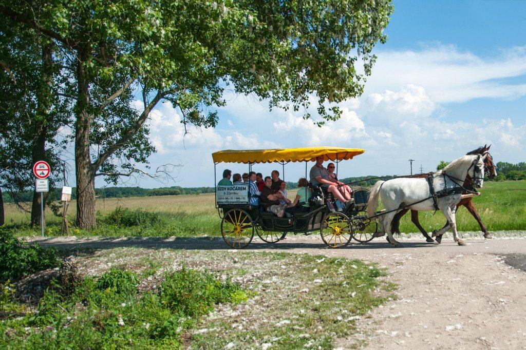 Lednice - koč s koníkmi