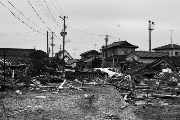 odaka - fukušima