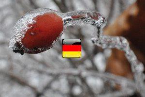 počasie po nemecky