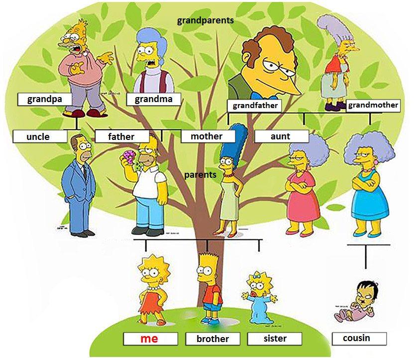 príbuzní a rodina po anglicky - the family