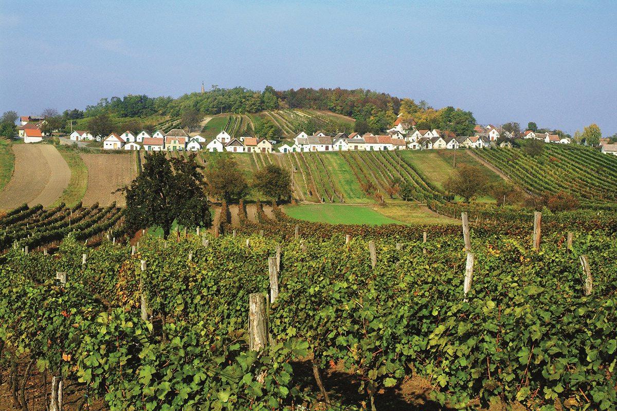 Vínna jeseň Rakúsko