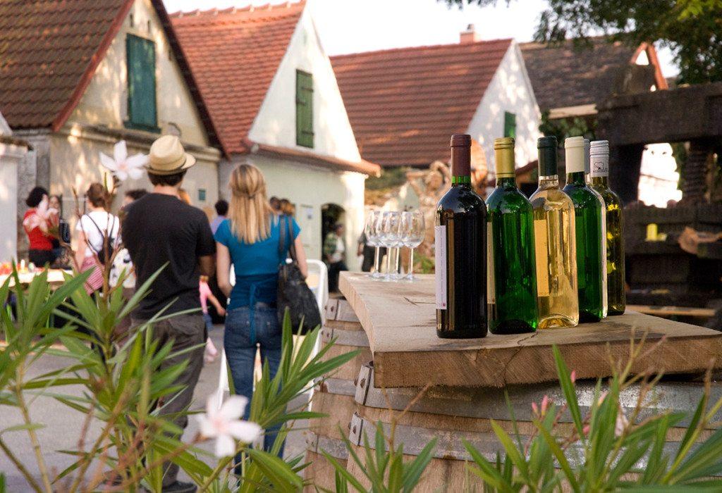 Vinobranie a ochutnávky dolnorakúskych vín