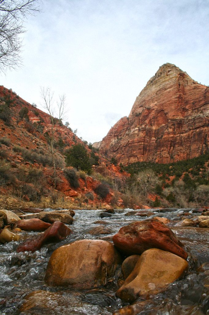 Zion National park - river