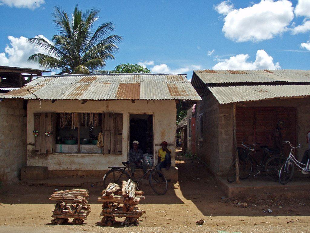 Zanzibar domáci