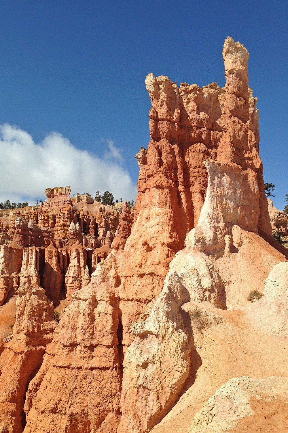 The hoodoos of bryce canyon national park for Cabine vicino a bryce canyon