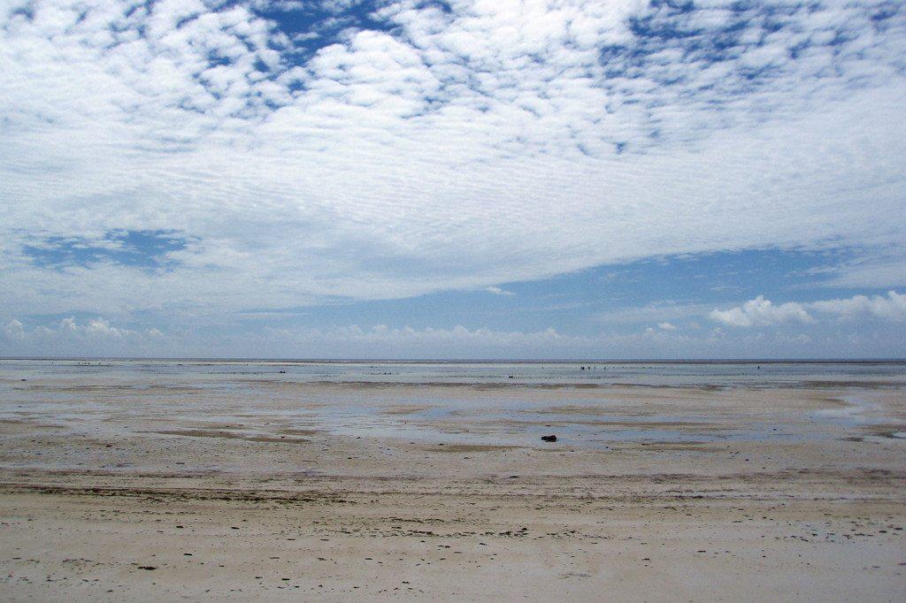 Zanzibar - odliv oceánu