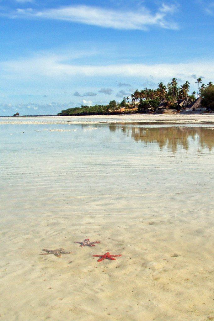 pláž zanzibar