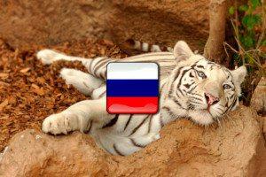 Zvieratá po rusky - Ruština pre samoukov
