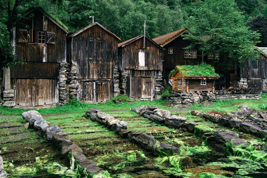 Nórsko a krásne domčeky