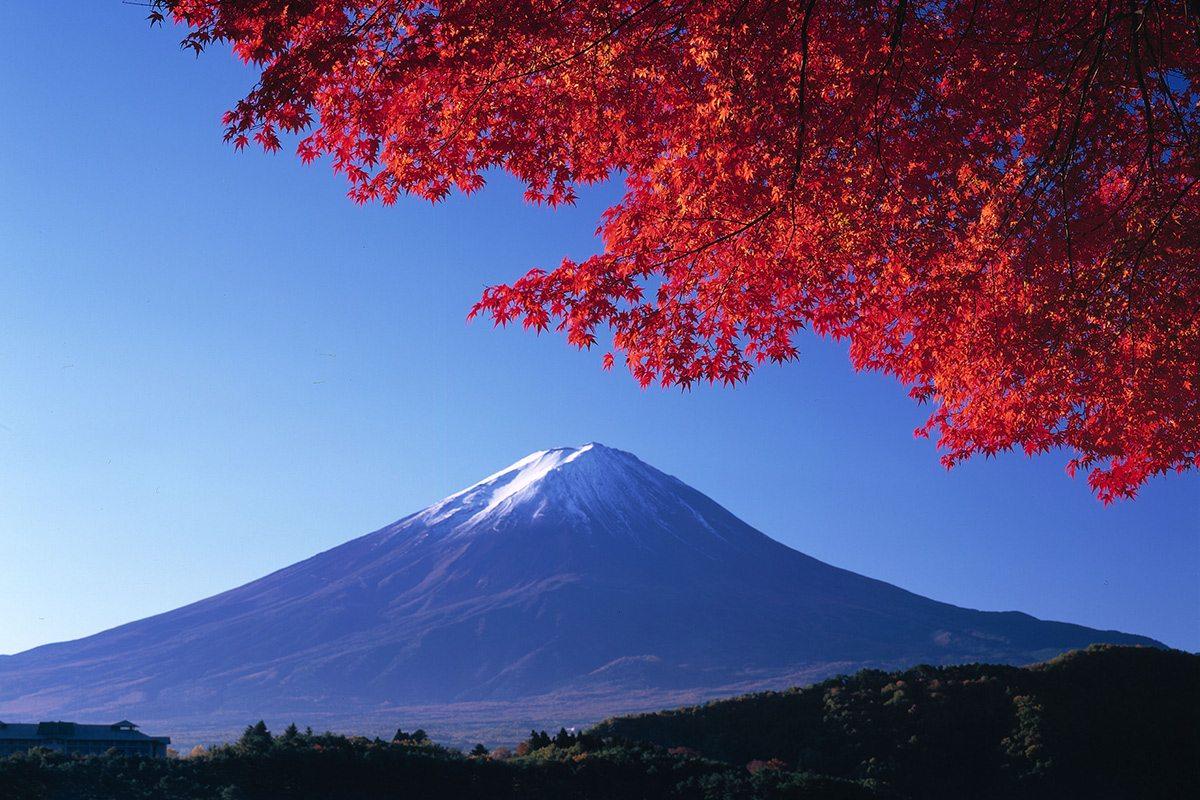 Japonsko - Fuji a sakura
