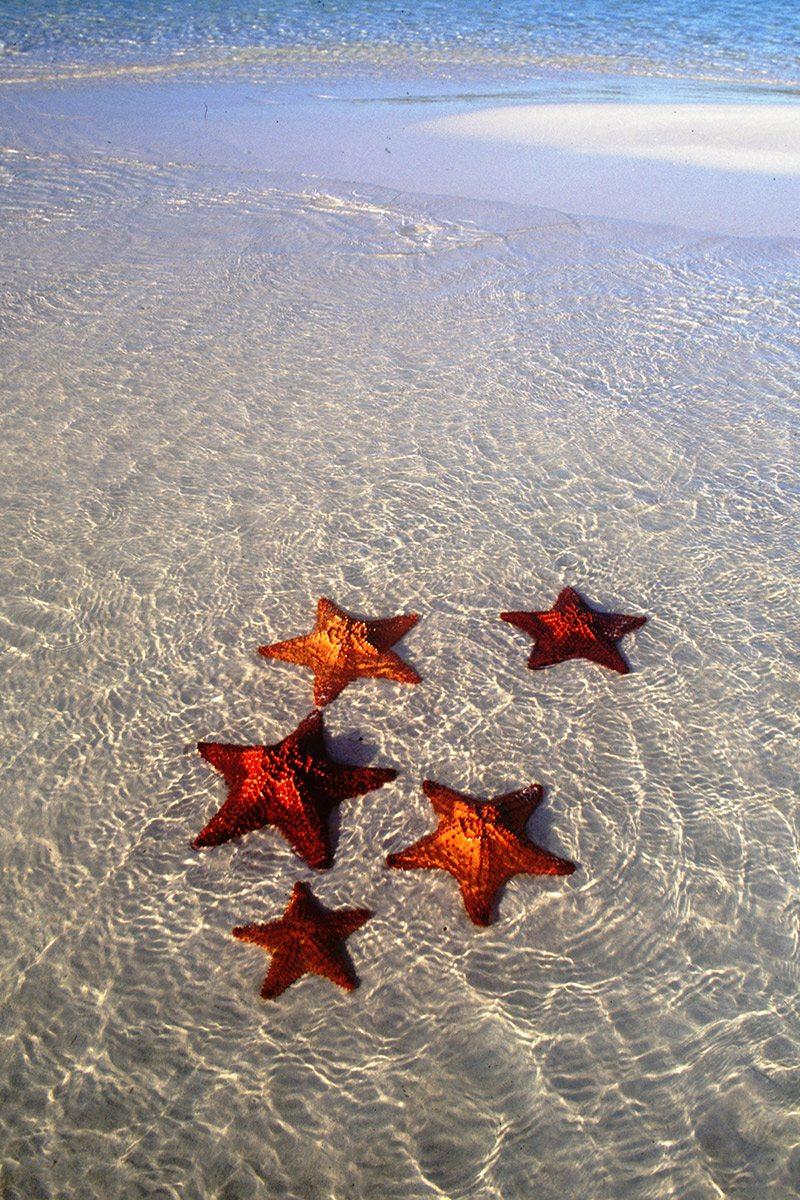 pláže Varadero