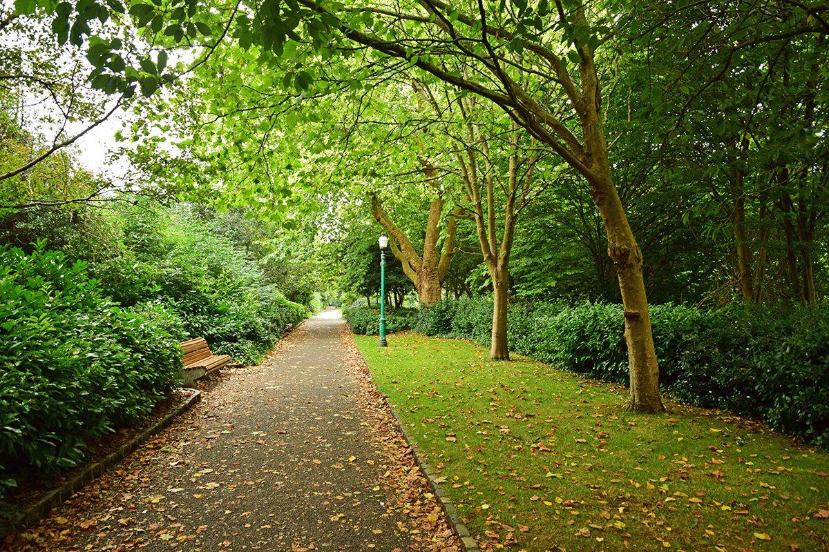 Merion park Dublin