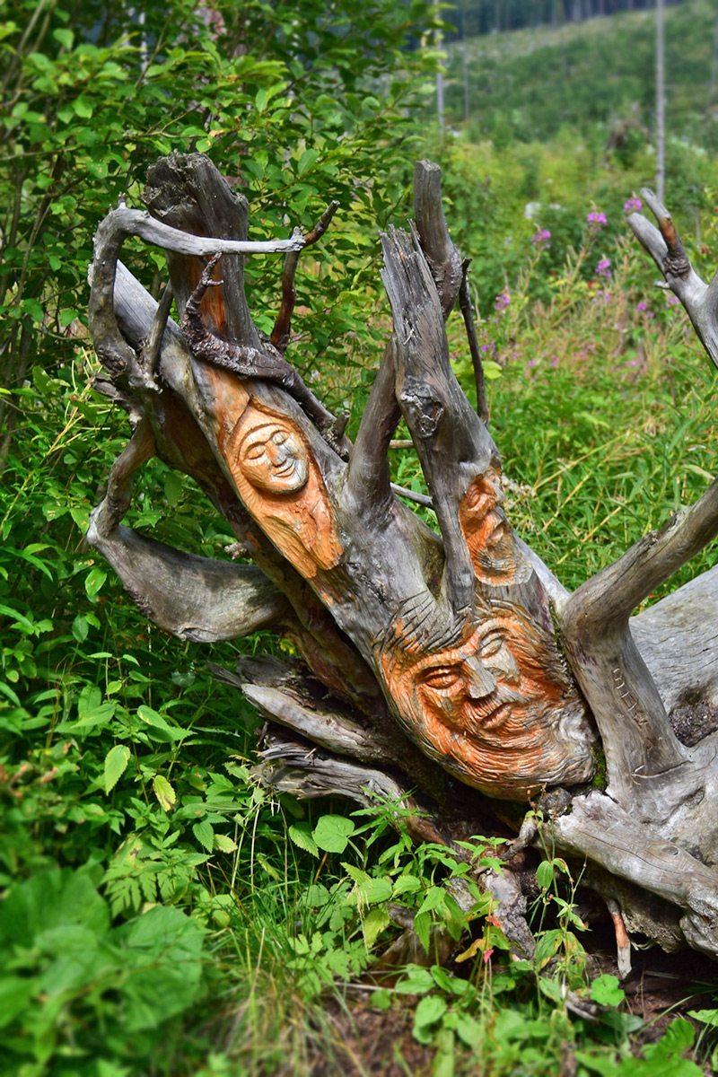 vytesané tváre do stromu