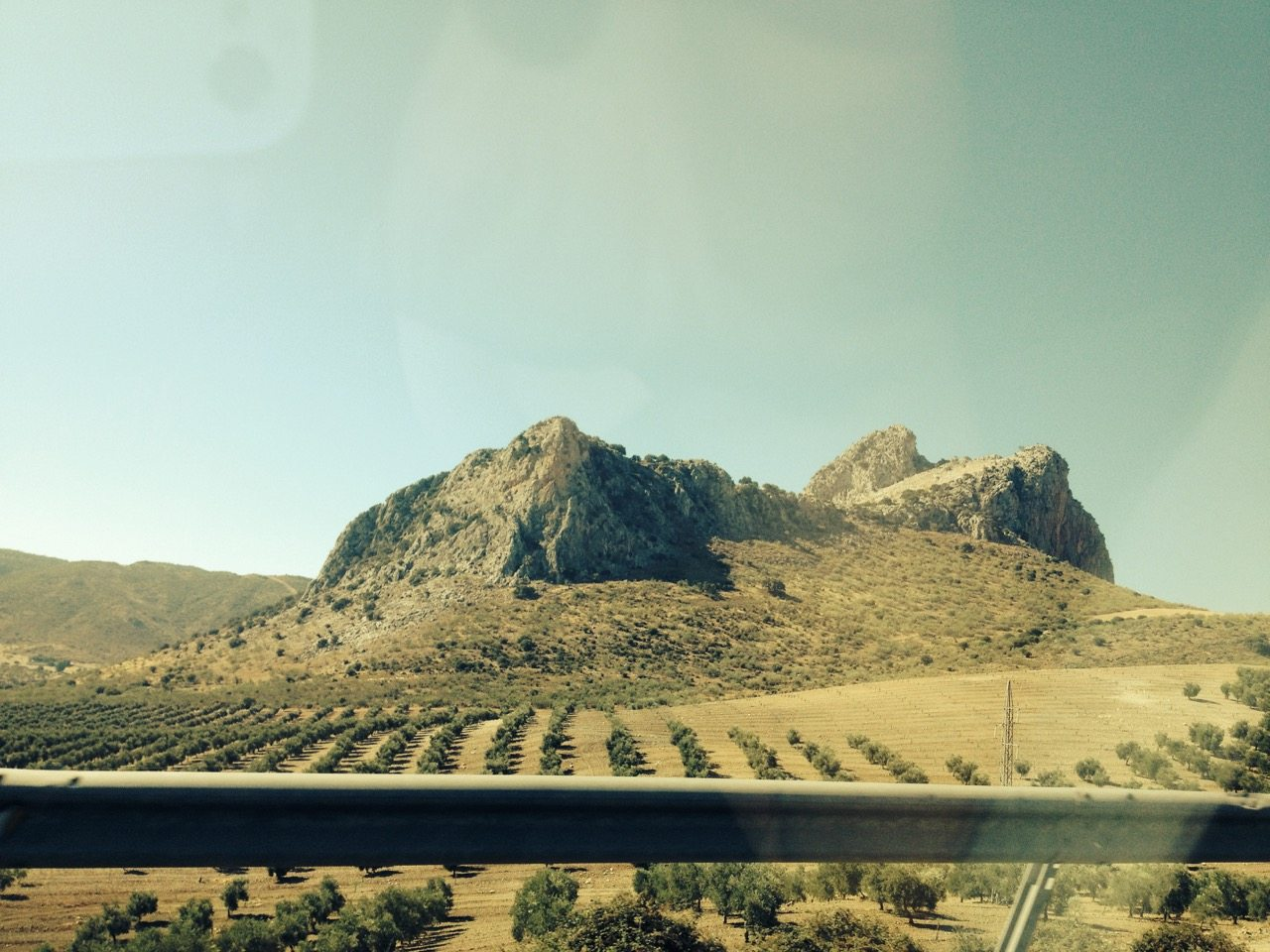 andaluzske vinohrady
