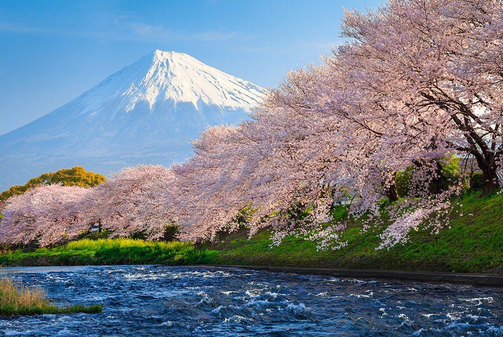 Japonsko 30.3.