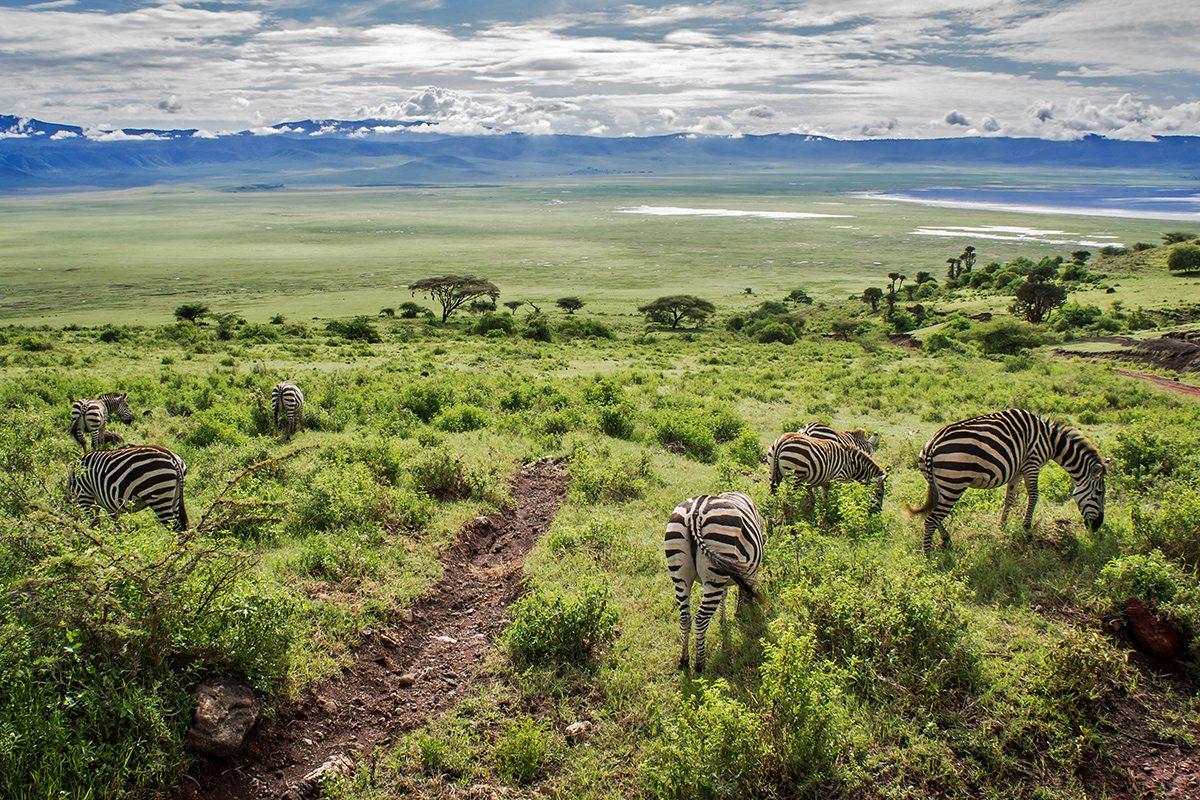 Keňa Zanzibar Tanzánia