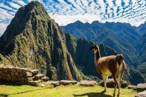 Chile Peru Bolivia