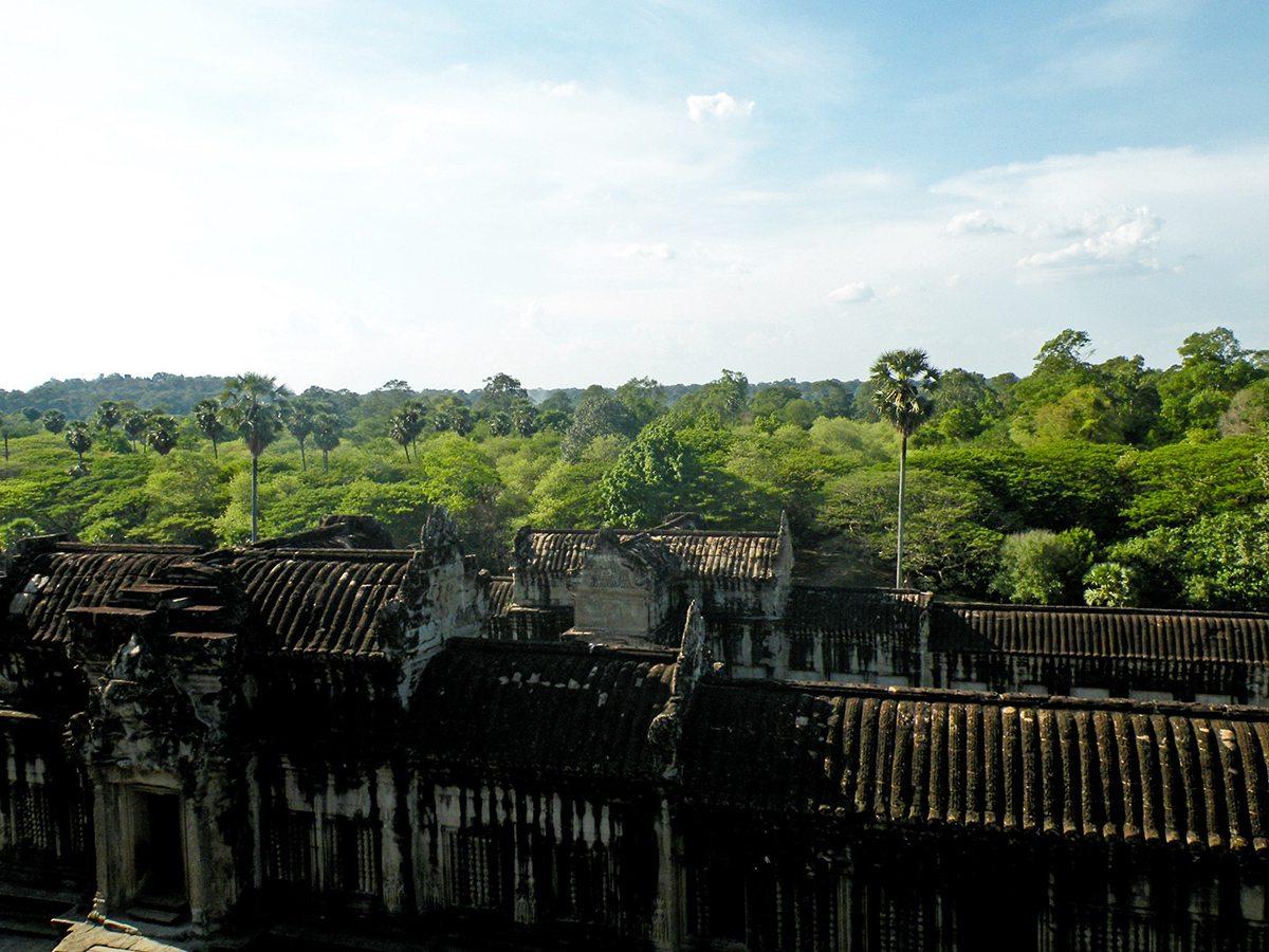 džungla Kambodža