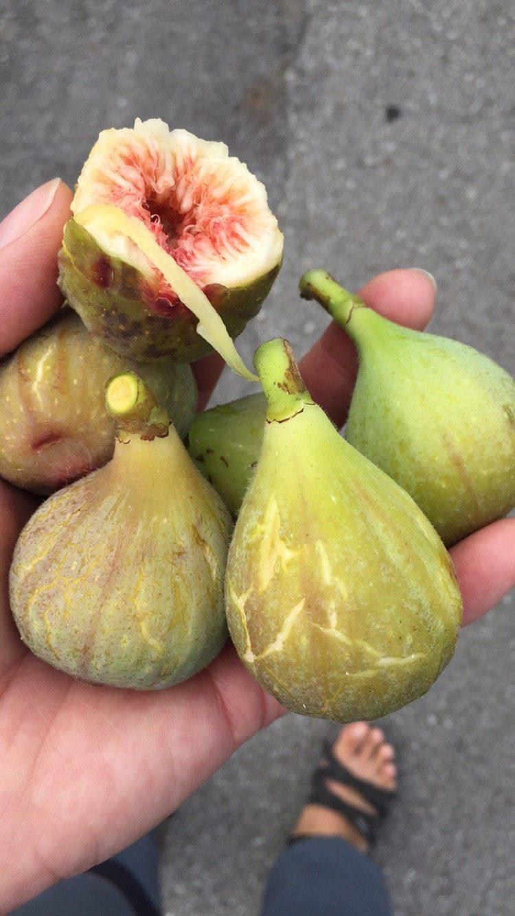 figi a ovocie
