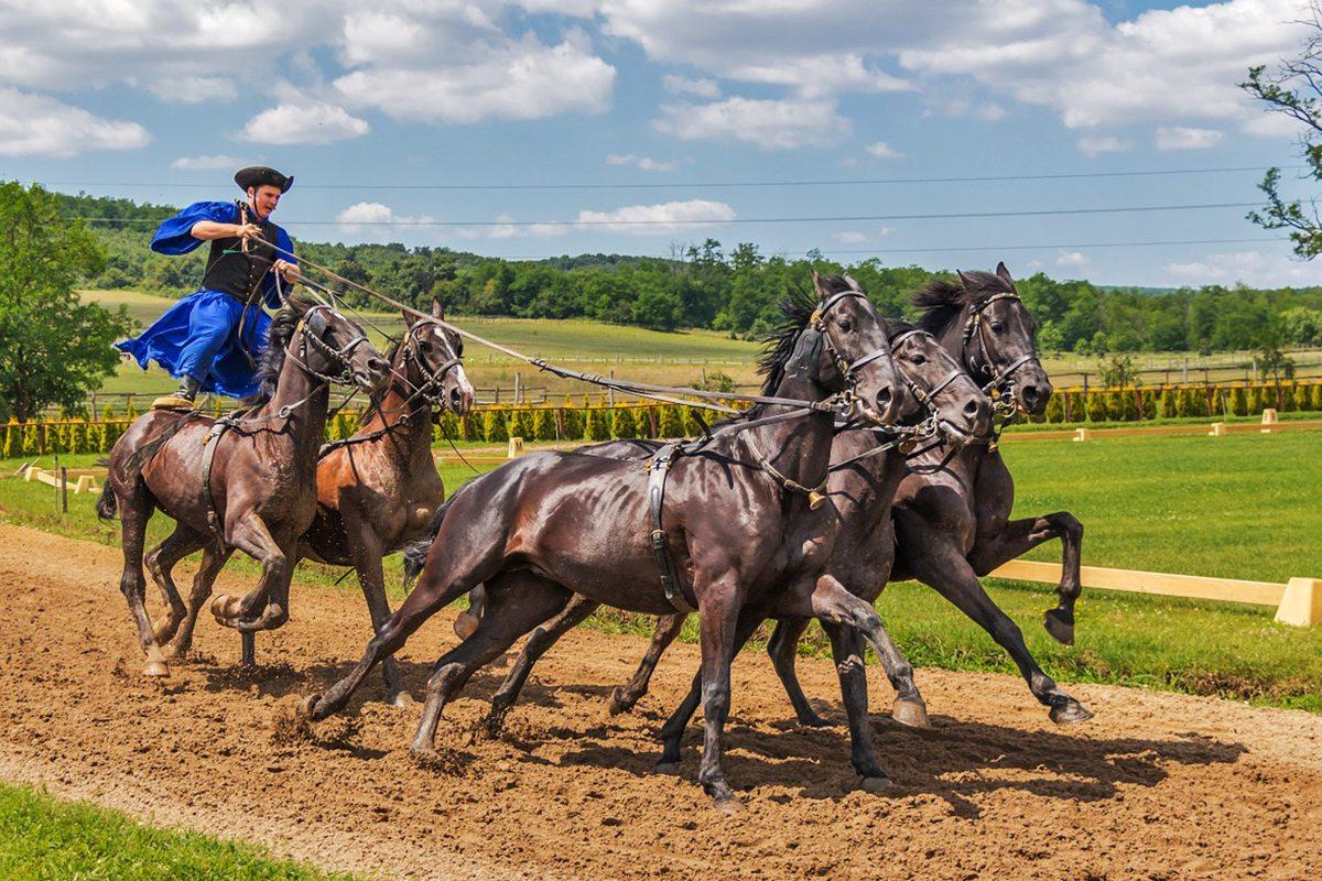 maďarskí kovboji