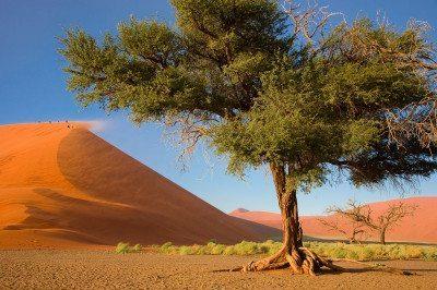 Namíbia - Duna 45