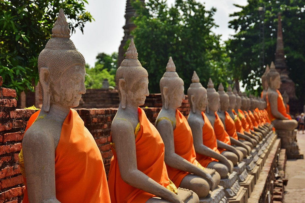 Budhovia