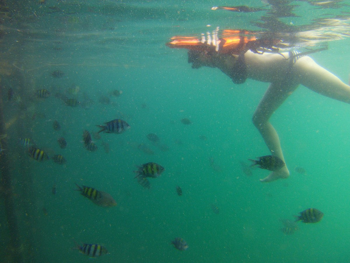 šnorchlovanie thajsko