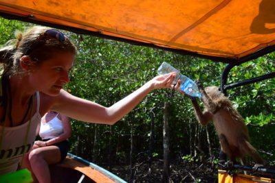 smädná opica