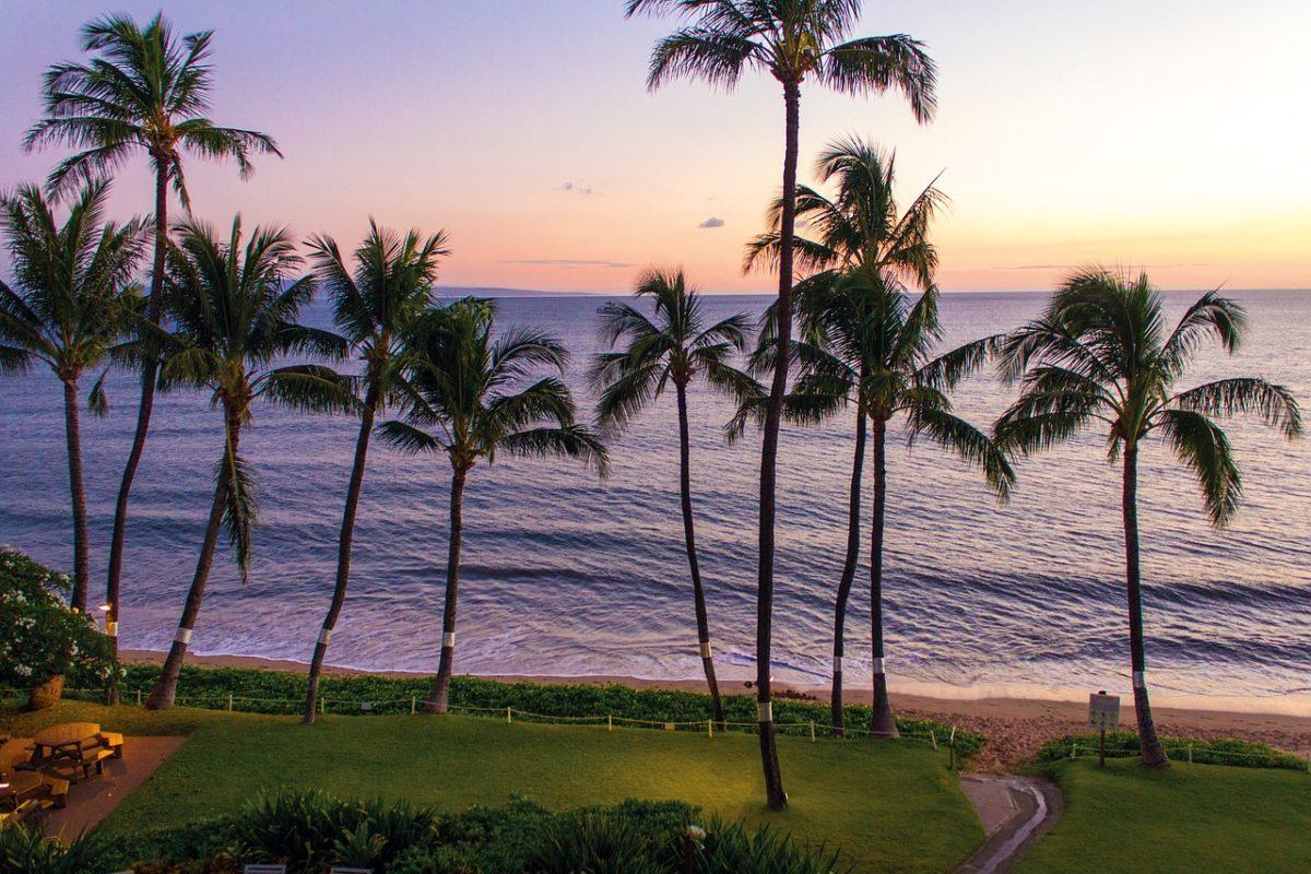 svadobna cesta - Havaj
