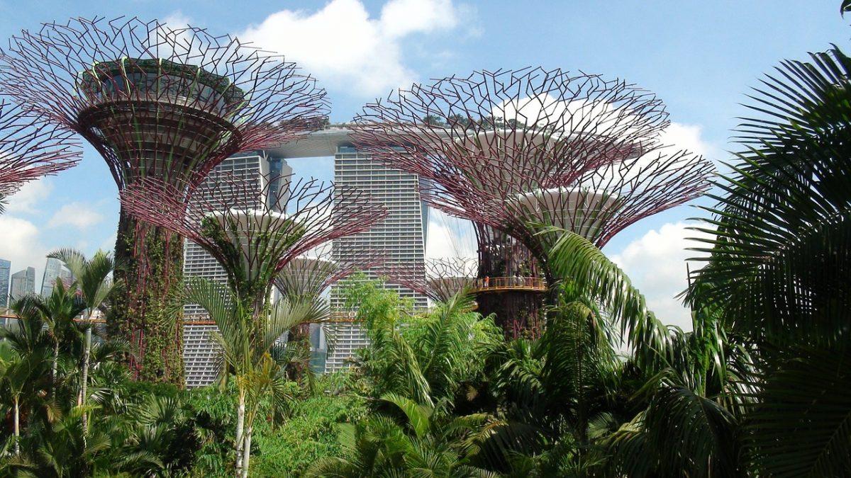 singapur - záhrada