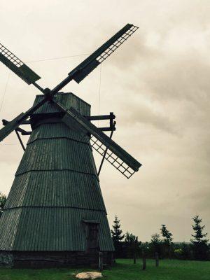 Dudutki - mlyn