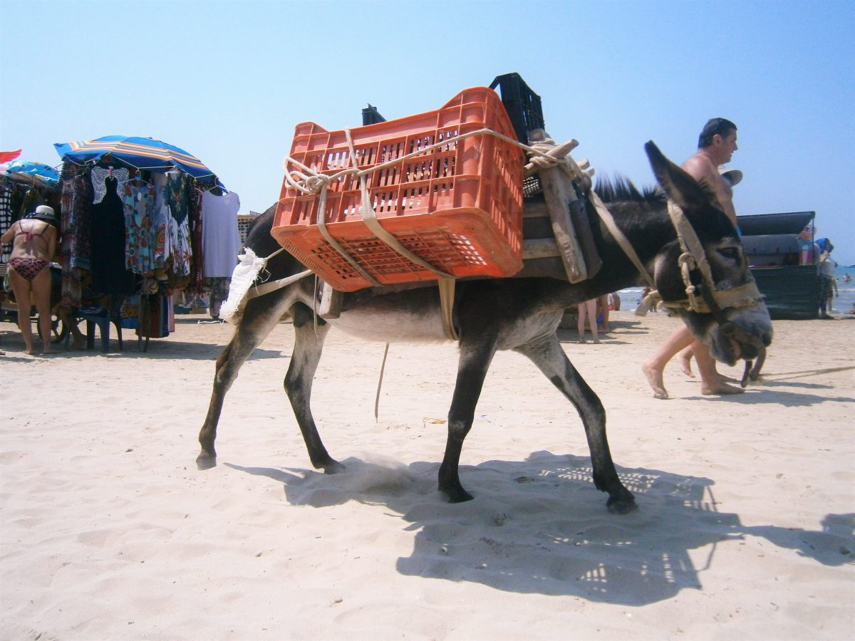 Plážoví predavači