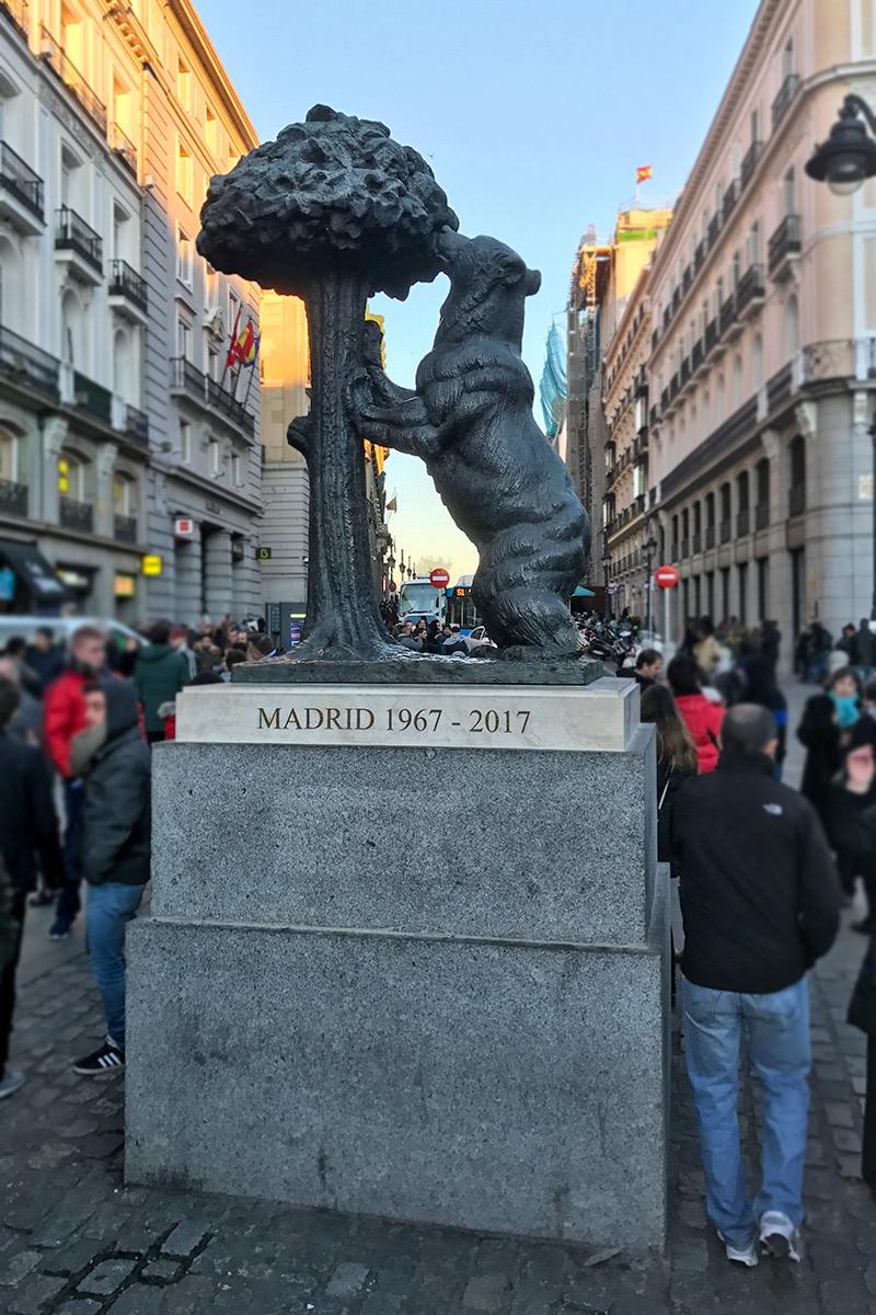 oso de Madrid