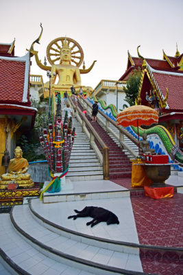 Big Budha Koh Samui