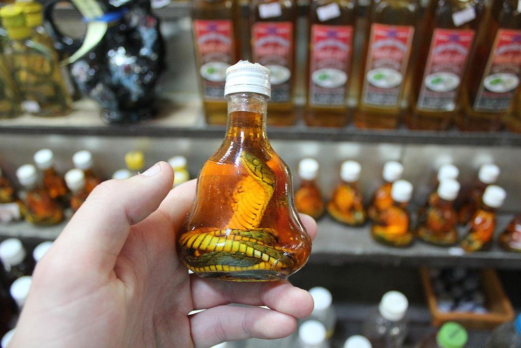 Vietnam zaujímavosti - víno s hadom